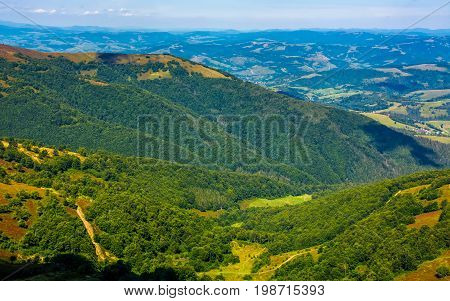 Forests Of The Carpathian Mountains