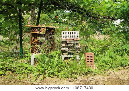 homemade insect hotel for various bugs and invertebrates in the garden in summer