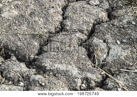 Global warming drought, arid soils separated from thirst,