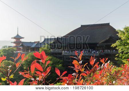 Gran templo en la ciudad japonesa de Kioto