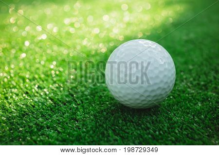 Golf ball with putter on green course. Image with selective focus