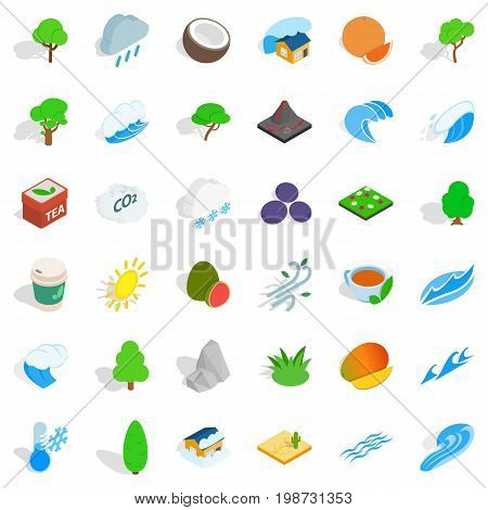 Big tree icons set. Isometric style of 36 big tree vector icons for web isolated on white background