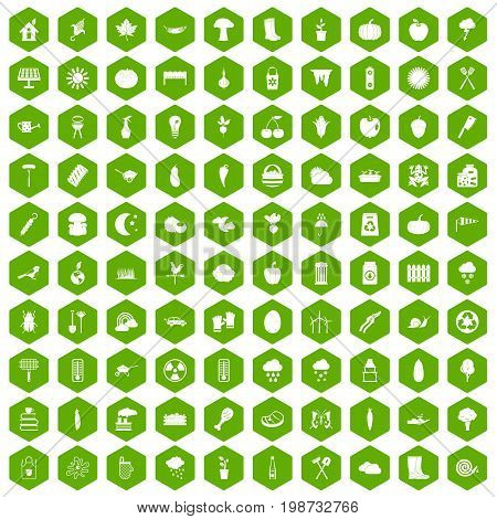 100 vegetables icons set in green hexagon isolated vector illustration