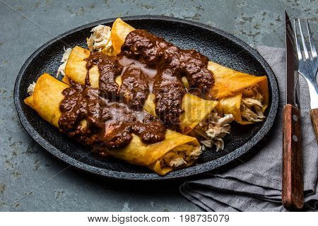 Mexican Cuisine. Traditional Mexican Chicken Enchiladas With Spicy Chocolate Salsa Mole Poblano. Enc