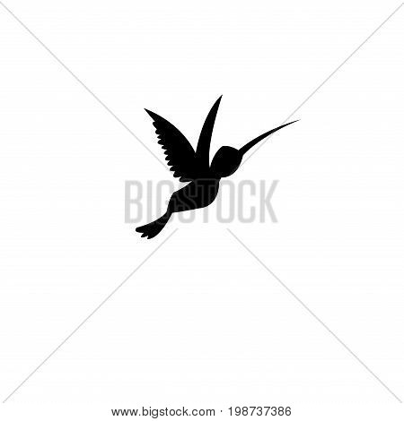 Vector sign silhouette of a hummingbird on a white background