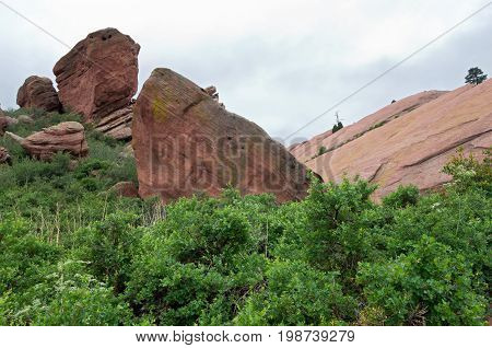 red rocks park outcrops and rocky terrain surrounded by lush vegetation in jefferson county colorado