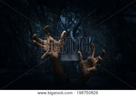 Zombie hand rising out from ground with cross over spooky forest at night time Horror background Halloween concept