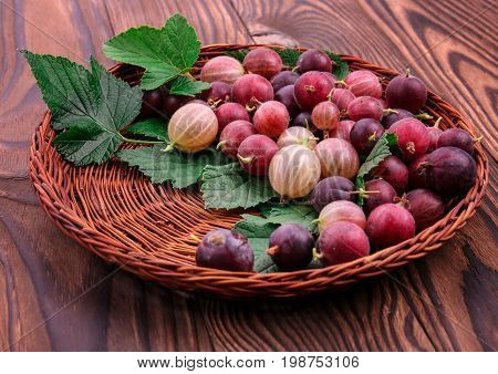 A brown wooden basket full of delicious multicolored gooseberries with beautiful green leaves on a wooden background. Tasty, juicy and ripe gooseberries. Healthful berries.