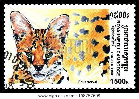 STAVROPOL RUSSIA - August 04 2017 : A Postage Stamp Printed in the Cambodia shows Felis (felis serval) series circa 1998