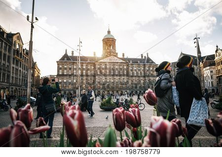 Amsterdam Netherlands - 25 April 2017: Royal Palace on the Dam Square on background of couple of tourist in rastaman hats and tulips in the evening. Amsterdam Netherlands