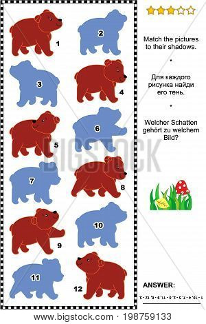 Visual puzzle with cute brown bear cubs: Find the right shadow for each picture. Answer included.