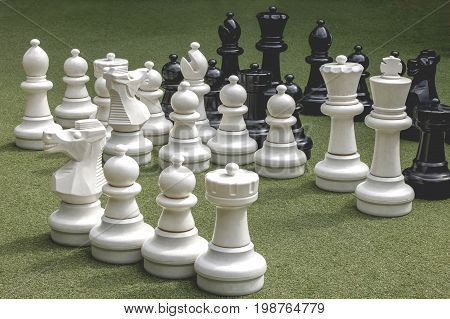 White and black chess is located in the green field.