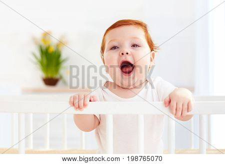 Poprtait Of Cute Infant Baby Standing In A Cot At Home