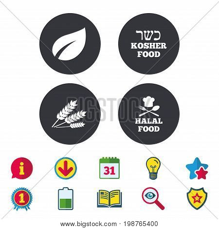 Natural food icons. Halal and Kosher signs. Gluten free. Chief hat with fork and spoon symbol. Calendar, Information and Download signs. Stars, Award and Book icons. Light bulb, Shield and Search
