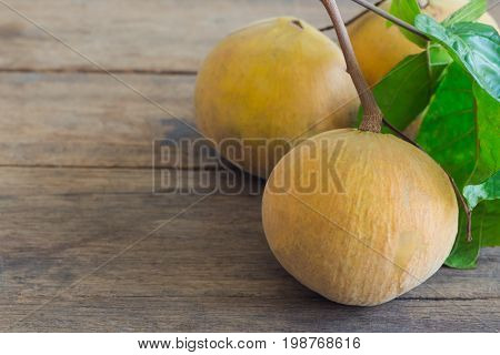 Santol with limb and leaf on rustic wood table. Santol is one of delicious Thai fruit so sweet and sour. Fresh santol on wooden plank with copy space for background or wallpaper.