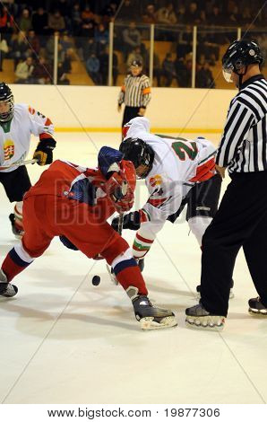 KAPOSVAR, HUNGARY - NOVEMBER 6: Unidentified players in action at the friendly ice hockey match with Hungarian and Russian Youth National Team, November 6, 2009 in Kaposvar, Hungary.