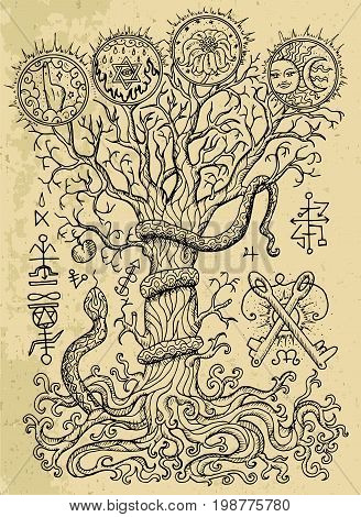 Mystic drawing with spiritual and christian religious symbols, snake, tree of knowledge and forbidden fruit on texture background. Occult and esoteric vector illustration, tattoo gothic concept