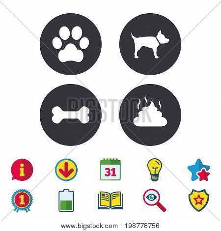 Pets icons. Dog paw and feces signs. Clean up after pets. Pets food. Calendar, Information and Download signs. Stars, Award and Book icons. Light bulb, Shield and Search. Vector
