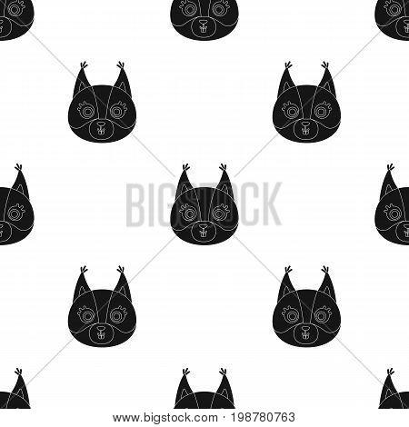 Squirrel muzzle icon in black design isolated on white background. Animal muzzle symbol stock vector illustration.