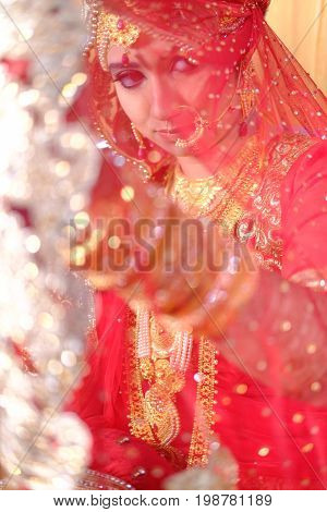 look though transparent cloth, a portrait of indian bride