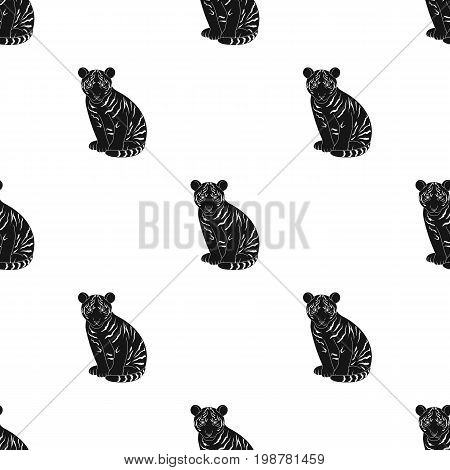 Young tiger.Animals single icon in black style vector symbol stock illustration .