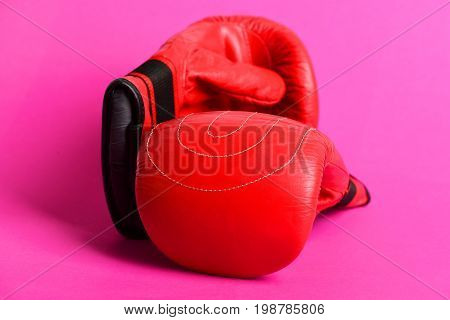 Two Sport Gloves For Boxing And Martial Arts
