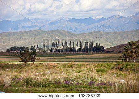 The Tien Shan mountains foothills and meadows in the valley of lake Issyk-Kul. The Issyk-Kul region Kyrgyzstan.