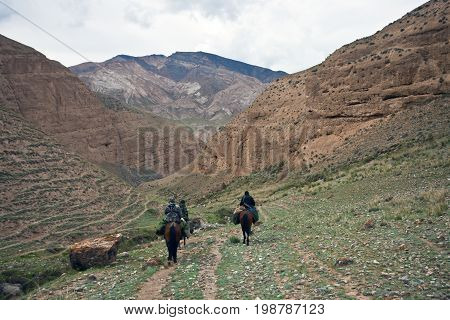 Three hunters on horse back with a mountain hunting in the mountains of Tien Shan Kyrgyzstan.