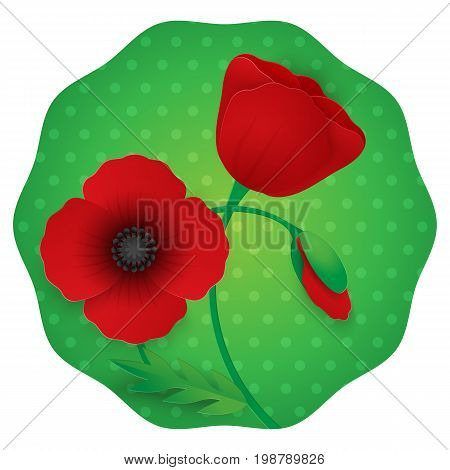 Paper flower realistic style vector illustration of full blown and still blooming red poppies with stem and leaf against green polka dot background