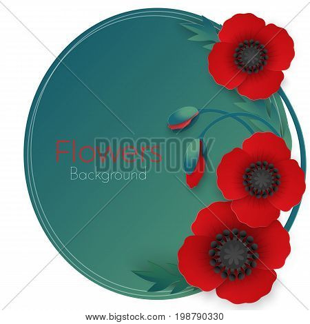 Flowers background with full blown and still blooming red poppies with green stem and leaves isolated vector illustration