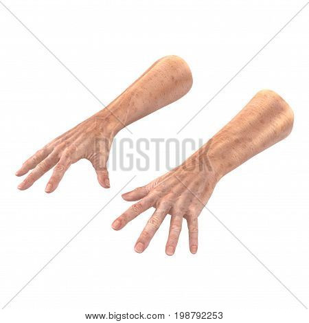 hand of the old man isolated on a white background. 3D illustration
