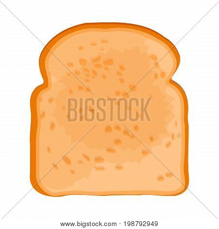 Closeup of crispy toasted slice of white bread with golden crust isolated vector illustration on white background in realistic style
