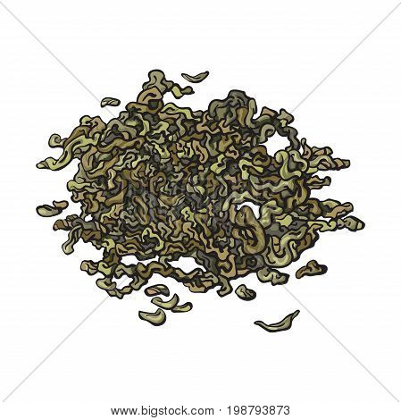 Hand drawn pile, heap, handful of dry, fermented green tea leaves, sketch vector illustration isolated on white background. Realistic hand drawing of dry green tea leaves
