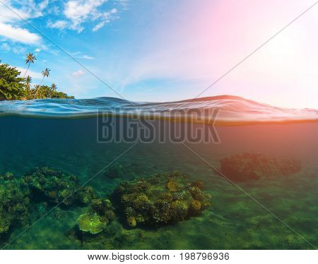 Double landscape with sea and sky. Split photo with tropical island and underwater coral reef. Sunrise pink sunshine flare. Above and below waterline seaview. Exotic seashore panorama. Split seascape
