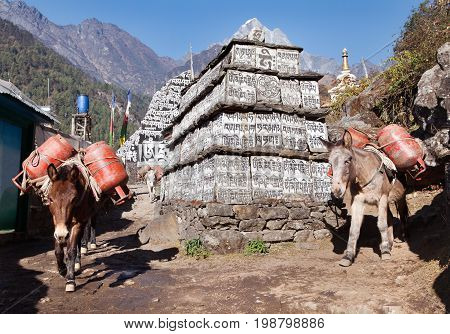 Caravan of mules with gas cylinders on the way to Everest base camp prayer wall with buddhist symbols Trek from Lukla to Namche Bazar Khumbu valley Sagarmatha national park Nepal