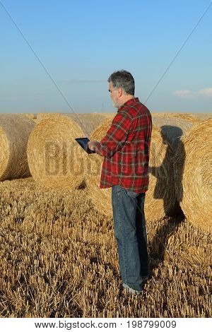Farmer And Bale Of Straw In Field After Harvest