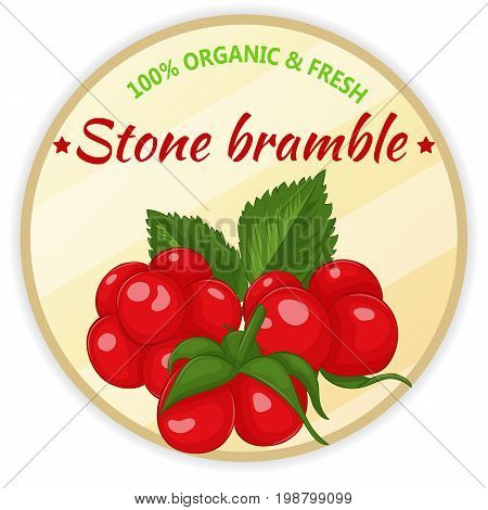 Vintage label with stone bramble isolated on white background in simple cartoon style. Vector illustration. Fruit and Vegetables Collection.
