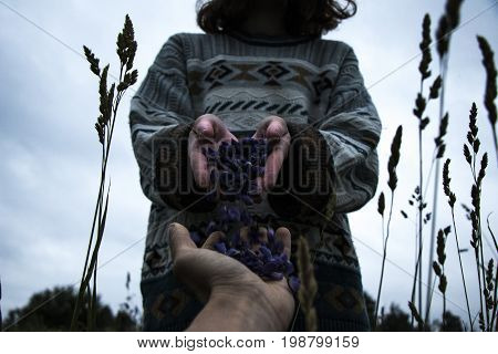 girl and flowers at the field. cloudy day