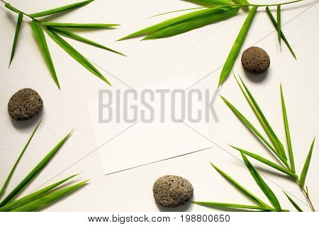Minimal flat lay with green leaf and stone. Bamboo leaf and sea pebble on white background. Bamboo decor. Spa beauty banner template with place for text. Blank card with tropical leaves. Bamboo design