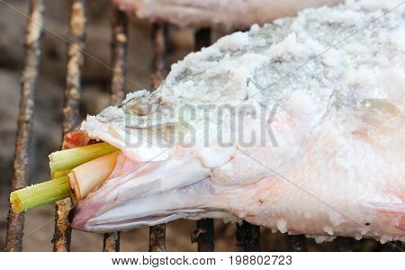 Salt-Crusted Grilled Fish Grill on Charcoal Stove