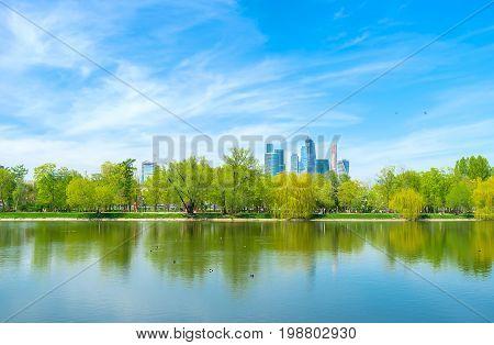 The Great Novodevichy Pond