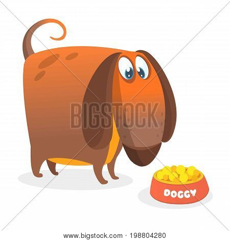 Cartoon Vector Illustration of Cute Purebred Dachshund eating from the plate. Isolated on white background