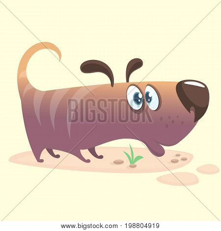 Cartoon Vector Illustration of Cute Purebred Dachshund. Doggy icon. Isolated on white background
