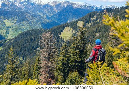 Man Hiker Stands On The Edge Of The Cliff Among Spruces