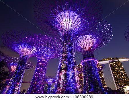 Supertree At Gardens By The Bay In Singapore