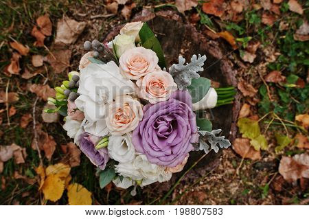 Close-up Photo Of An Incredible Wedding Bouquet Laying On The Stump. Fallen Leaves On The Background
