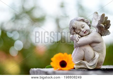 Little angel guardian sleeping on the grave