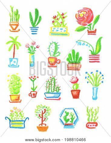 Potted flowers hand-drawn illustration on white background. Home flowers oil pastel drawing. Blooming houseplant icons. Cactus and succulent in pots. Houseplant clipart. Decorative flowers in pots