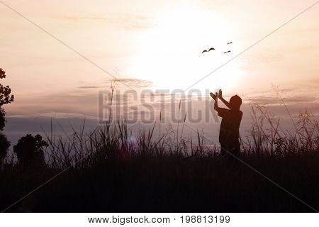 silhouette of women posing and showing hand in shape of bird on sky in twilight concept as thinking freedom free life analyzing about business and success in working at sunset