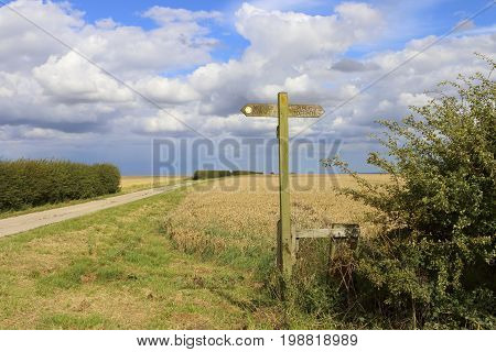 Signpost And Bridleway